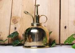 Vaporisateur en laiton doré pour plantes d'intérieur