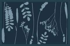 Tapis vertueux assortiment végétal 80x50cm