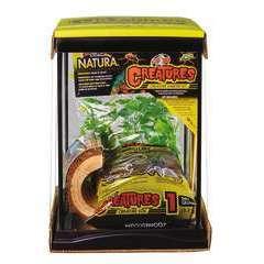 Kit Habitat Creature 22x21.3x28 cm pour araignées, insectes