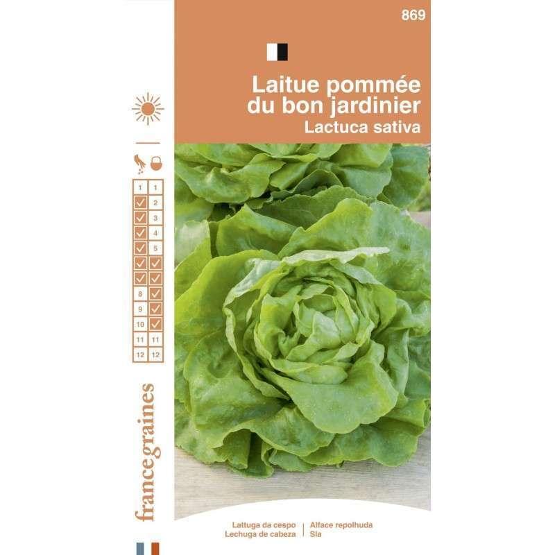 France Graines Laitue Pomm/ée Bon Jardinnier