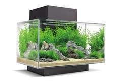 Aquarium Edge 23L Glossy Noir