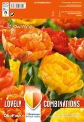 Bulbes de tulipes doubles jaunes et orange - x15