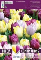 Bulbes de tulipes triples - x20