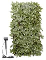 Treillis Solaire Lierre 180x60cm