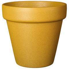 Pot Vaso Arty Honey 20cm