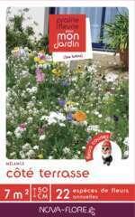 Mélange Cote Terrasse 7M²