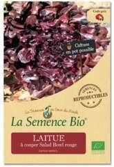 Graines potagères Laitue Salad Bowl Rouge Bio 0,4g