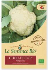 Graines potagères Chou-fleur Odysseus bio 0,1g