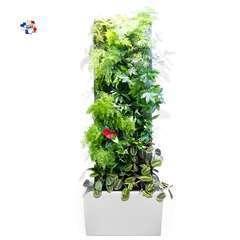 Mur Végétal POKKED | Arrosage Automatique | Modèle Sydney Blanc