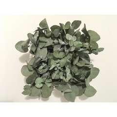 Tableau végétal stabilisé Yukari 20*20 cm
