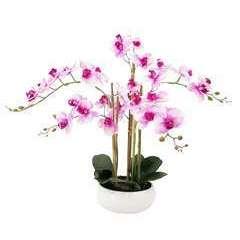 Orchidée artificielle veinée 6 branches coupe céramique 55cm
