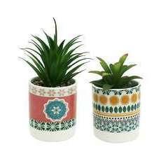 Lot de 2 succulentes artificielles - pots céramiques 2 modèles 20cm