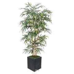 Bambou artificiel Yang Feuillage long 180 cm
