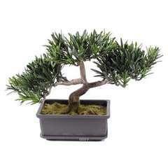 Bonsaï artificiel Pin Podocarpus H 23 cm