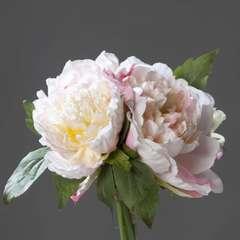 Bouquet de 3 Pivoines Rose epanouies