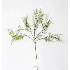 Branche Asparagus Plumosus artificiell