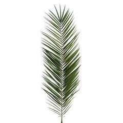 Feuille de palmier Phoenix artificielle