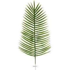Feuille de palmier Phoenix X12 H 51 cm Plast