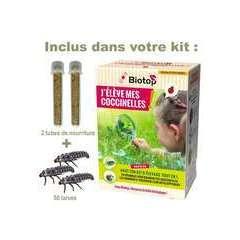 Kit d'élevage de coccinelles tout en 1 avec larves