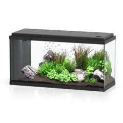 Aquarium Led Bio Noir 80 cm