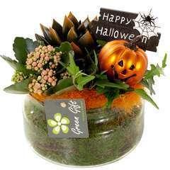 Compo Halloween : verrerie D16cm