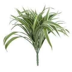 Bouquet de chlorophytum artificiel aux feuilles panachées 42cm