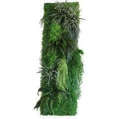 Mur végétal en kit N°2 200cm - 18 pièces