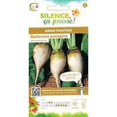 Graines de betterave potagère 'Albina vereduna' - en sachet