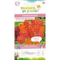 Graines de fleurs pour bouquets rouge - en sachet