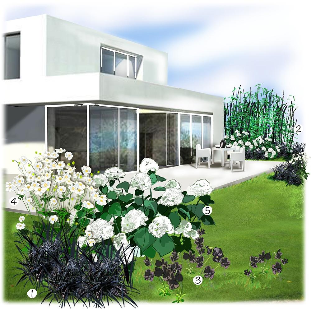 Jardin blanc et noir