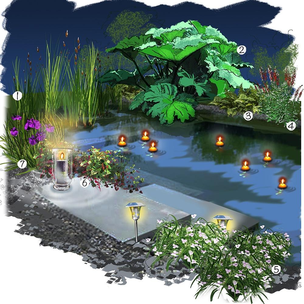 Jardin au bord de l'eau de nuit