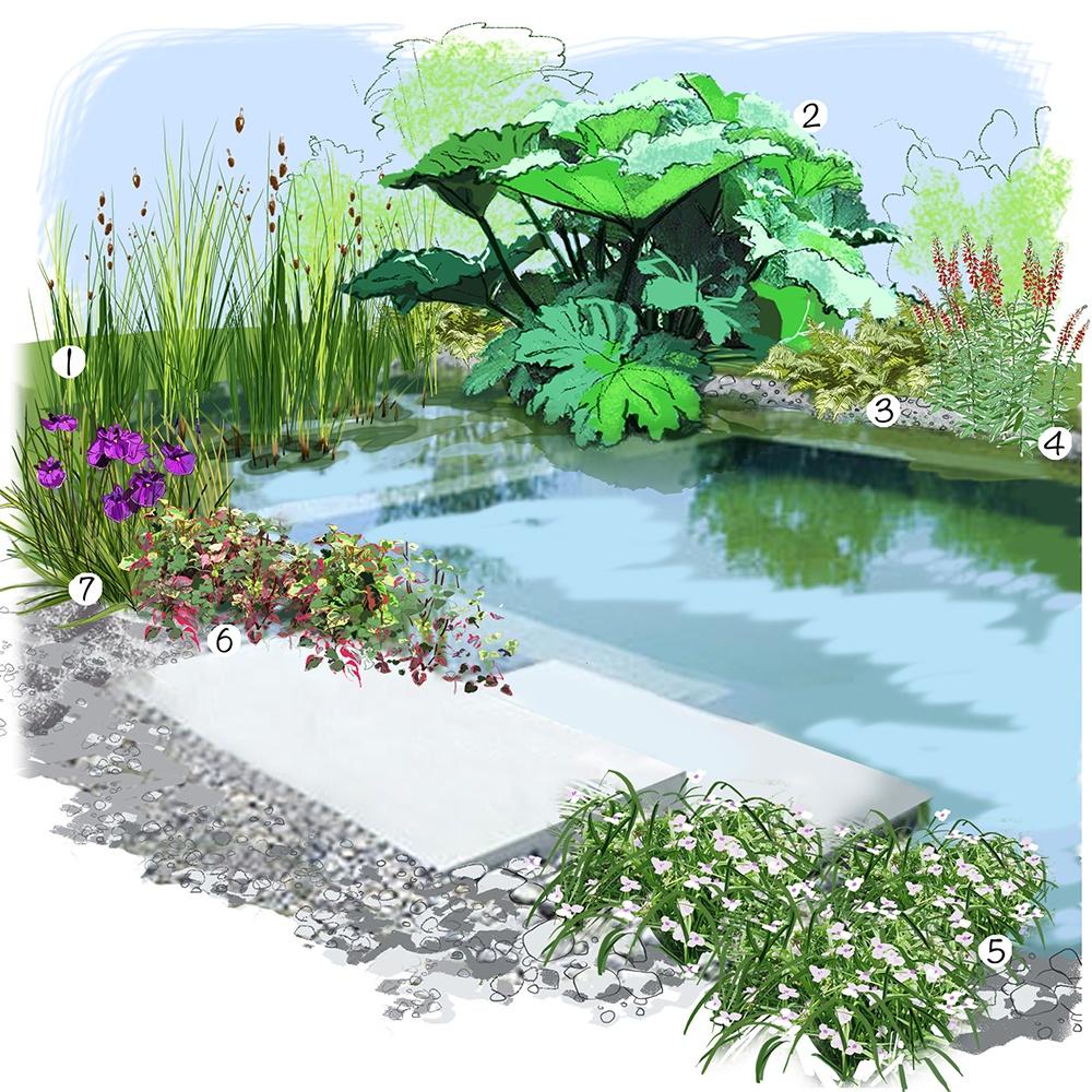 Jardin au bord de l'eau
