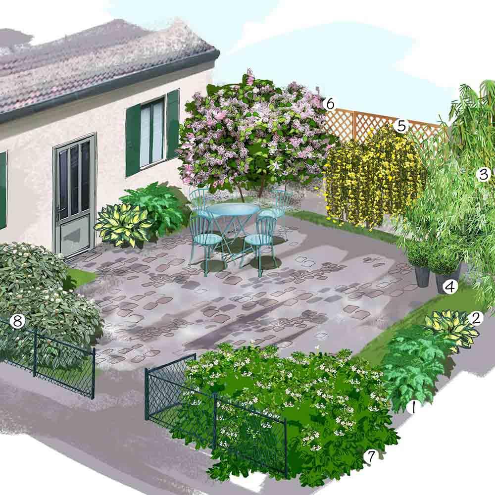 Jardin cour