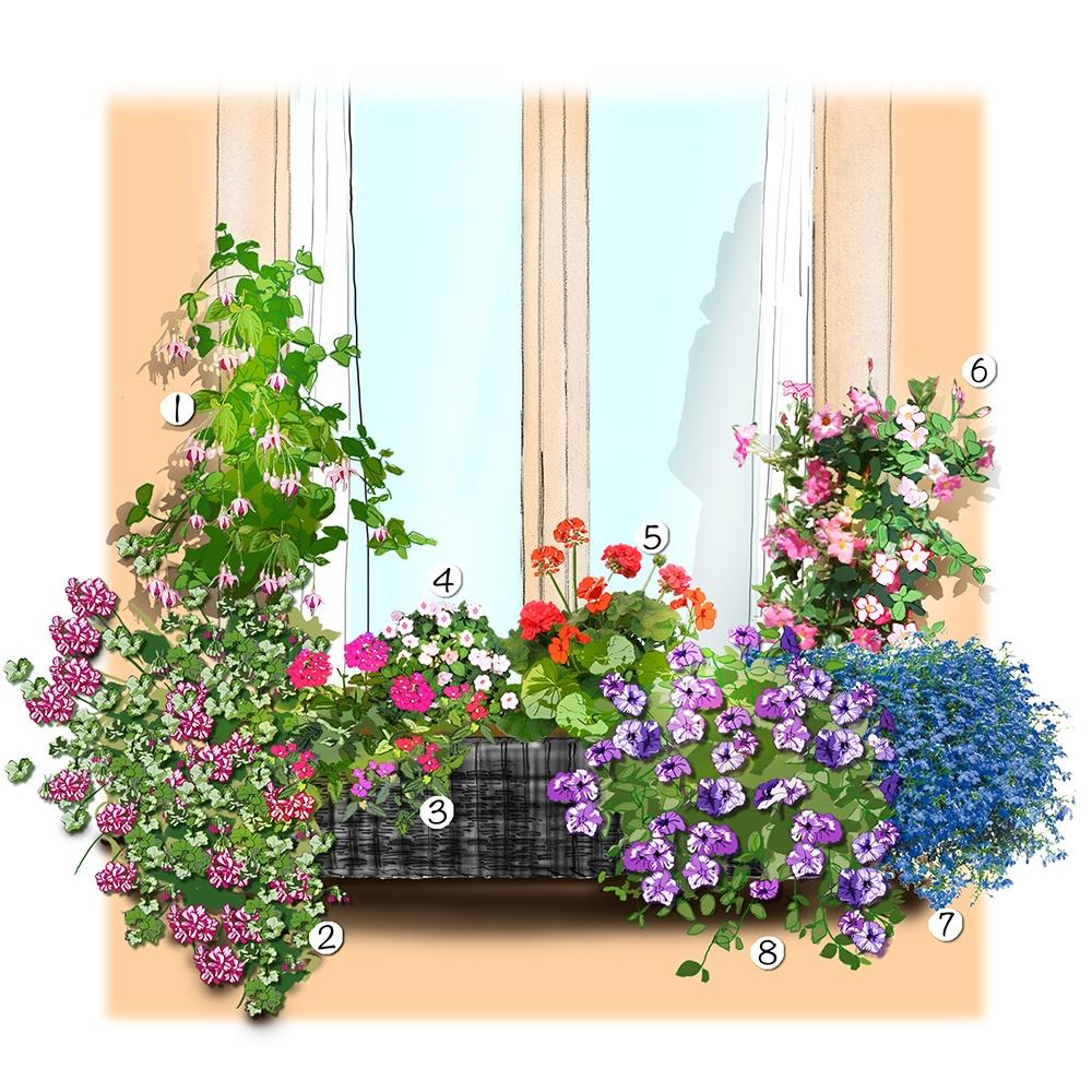 Un jardinière d'été