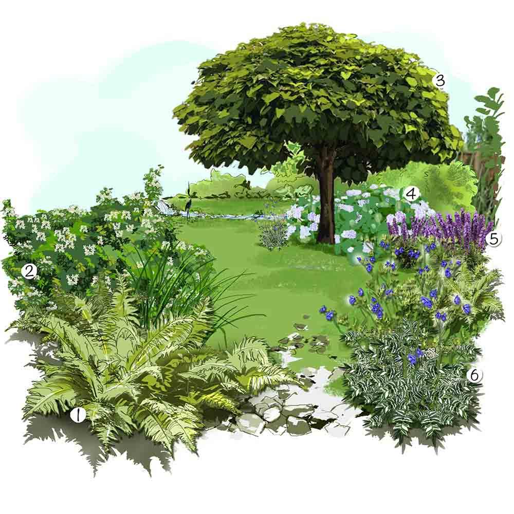 Un jardin rafraichissant