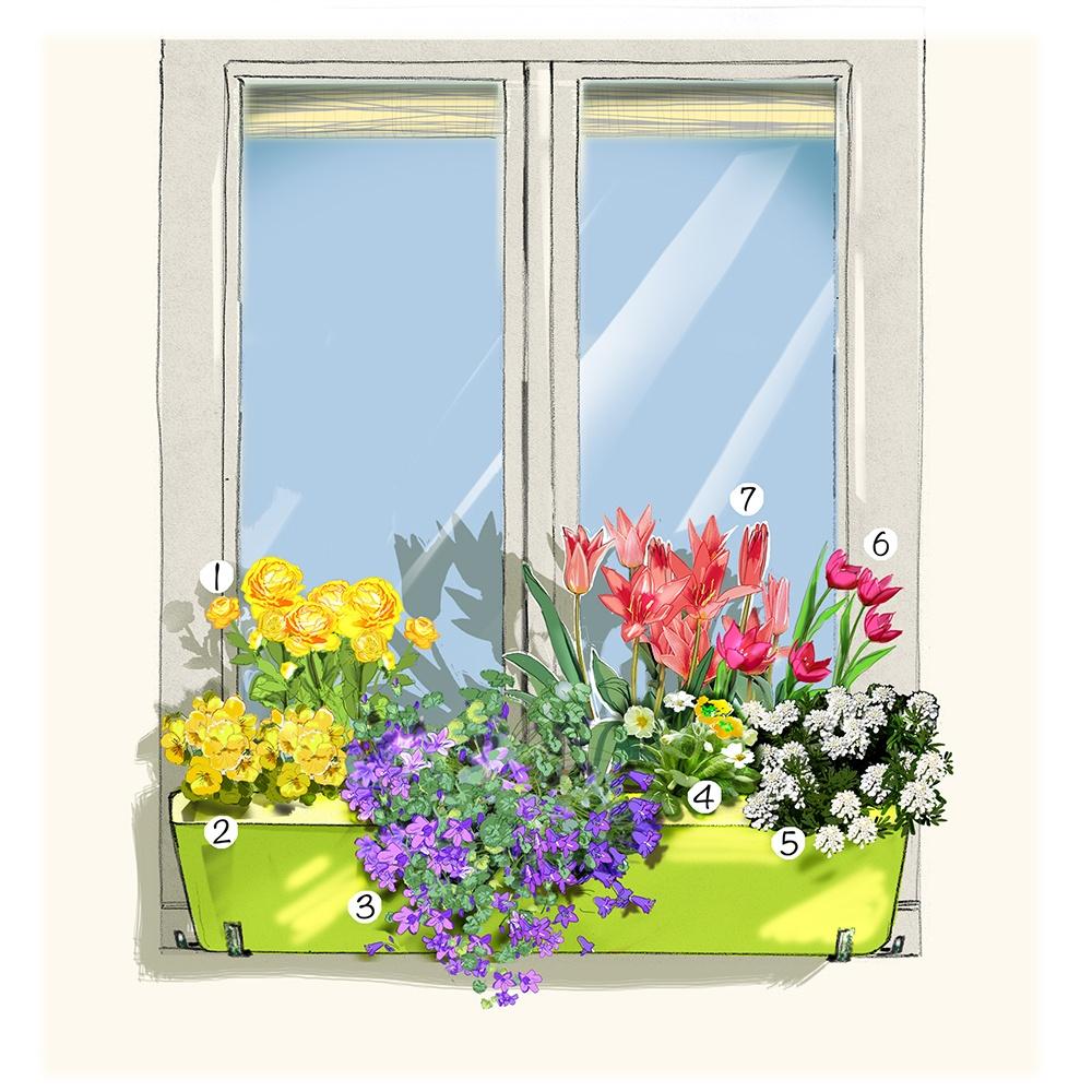 Décoration pour une belle fenêtre au printemps