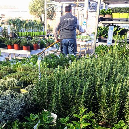 Votre jardinerie est ouverte pour tous vos achats essentiels !