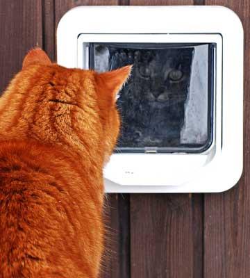 chatière pratique pour tous