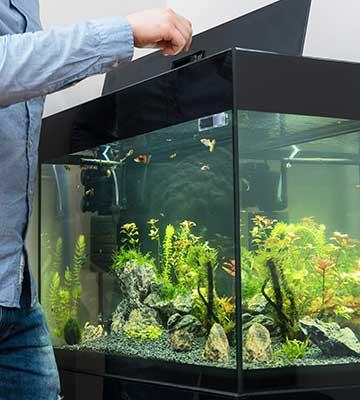 Installer distributeur alimentation poissons