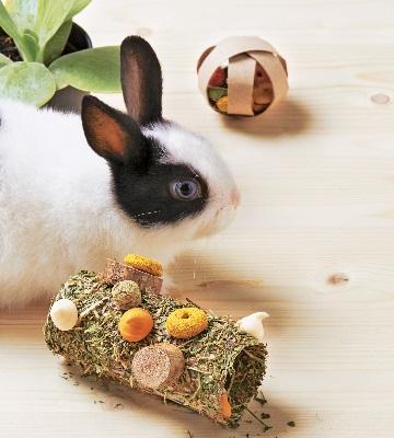 rouleau de printemps pour lapin