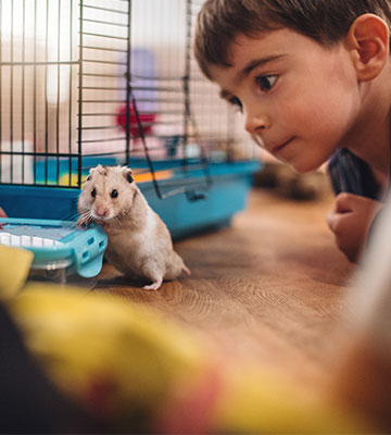 Enfant avec hamster