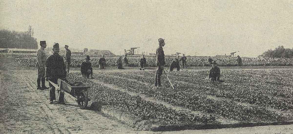 Le Lieutenant Georges TRUFFAUT et ses soldats jardiniers de l'armée américaine.
