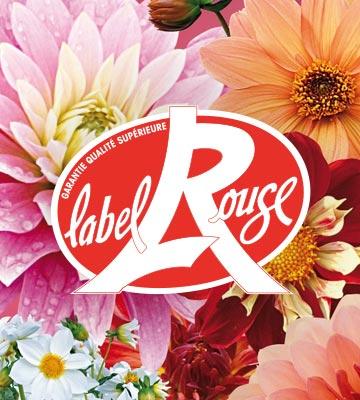 Végétaux Label Rouge