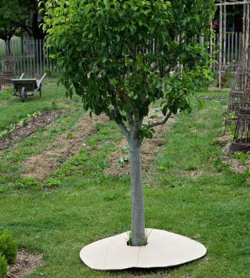 préparer sol permaculture
