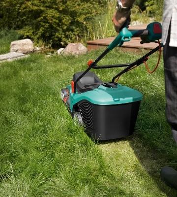 Quand tondre la pelouse