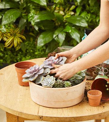 installer mini jardin