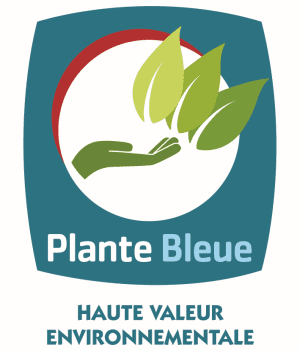 logo plante bleue
