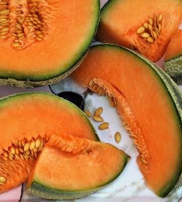 tranches melon