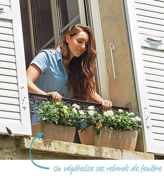 On végétalise ses rebords de fenêtre