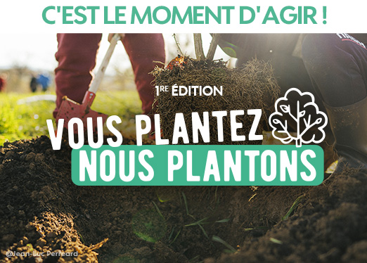 Vous plantez nous plantons